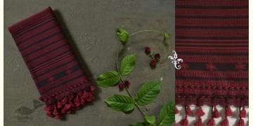 Beyond The Basics ✜ Handwoven Bhujodi Cotton Stole ✜ 29