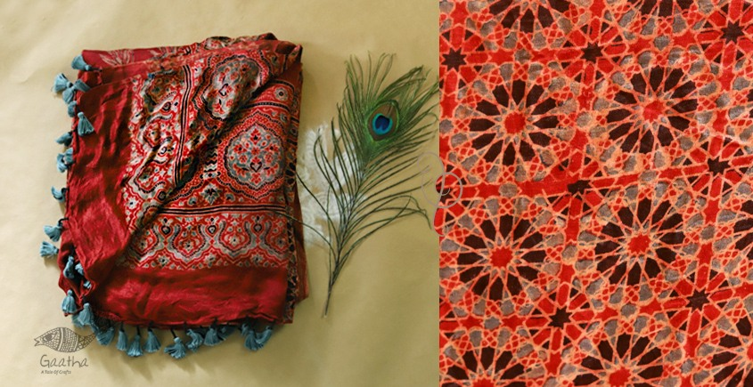 When Skies Bore Blossoms ❆ Gajji silk . Ajrakh dupatta ❆ 20
