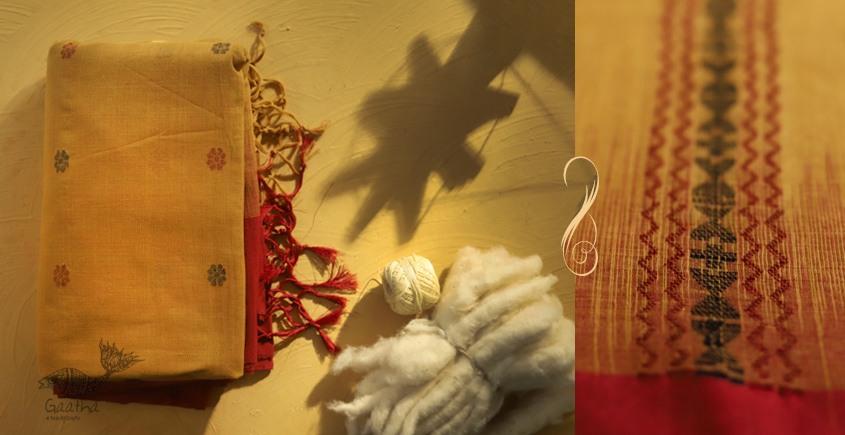 सूती ▦ Handloom Cotton Saree ~ 33