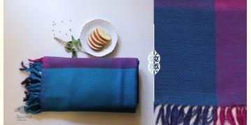 Falguni ✜ Handloom Woolen Shawl ✜ 33