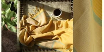 Kilmora  ✜ Handloom Cotton Stole ✜ 8