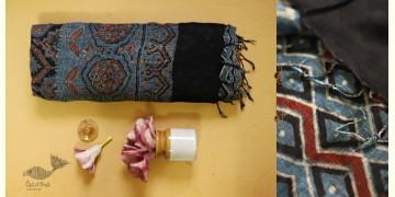 फ़लक ✽ Ajrakh Linen Saree ~ 13