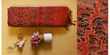 फ़लक ✽ Ajrakh Linen Saree ~ 24
