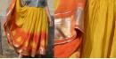 Gulshan ✿ Clamp Dyed Mango Ghaaghra ✿ 3