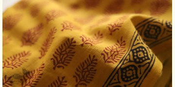 Bagh Printed Cotton Fabric (2.5 Mtr.) ❁ 2