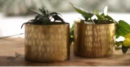 """Virasat ❋  Brass . Cup Planter (Single Piece - 2.6"""" x 2.6 x 2.6"""" ) ❋ 7"""