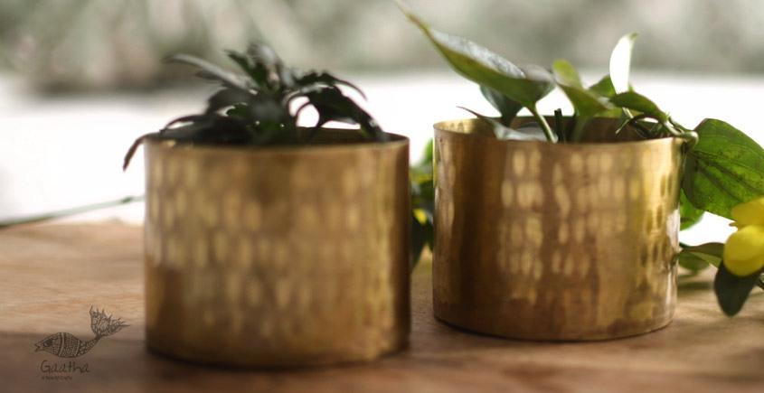Virasat ❋  Brass . Cup Planter (Single Piece - 2.6 x 2.6 x 2.6 ) ❋ 7