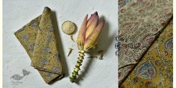 Haripriya .  हरिप्रिया ☘ Block Printed Cotton Saree ☘ Natural Dyed Kalamkari Design ☘ 9