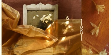 सुगंधिका ✻ Maheshwari ✻ Zari Border stole - Yellow ✻ C 4
