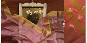 सुगंधिका ✻ Maheshwari ✻ Zari Border Stole ✻ G 13