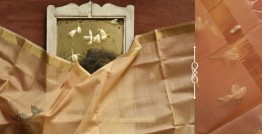 सुगंधिका ✻ Maheshwari ✻ Zari Border Stole ✻ G 18