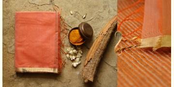निरुपमा ☙ Maheshwari Sarees . Kosa Pallu ☙ 31{B}