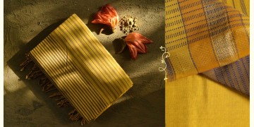 Ojovati ❢ Maheshwari ❢ Cotton Saree with Zari Border ❢ 21