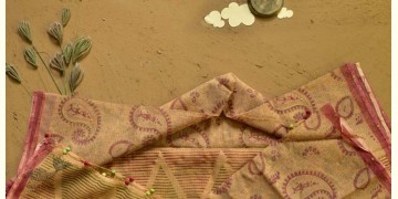 Saarang . सारंग ☁ Kota Doria Cotton Embroidered Dupatta ☁ 9