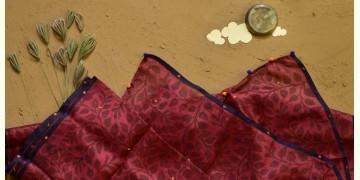 Saarang . सारंग ☁ Kota Doria Silk Embroidered Stole ☁ 11