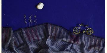 इत्तफाक ☼ Kota Doria Silk ☼ Embroidered Stole - 9