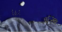 इत्तफाक ☼ Kota Doria Silk ☼ Embroidered Stole - 10