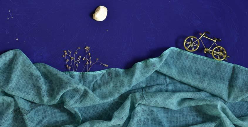 इत्तफाक ✤ Kota Doria Cotton ✤ Embroidered Dupatta - 8