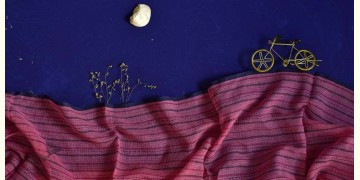 इत्तफाक ✤ Kota Doria Cotton ✤ Embroidered Dupatta - 9