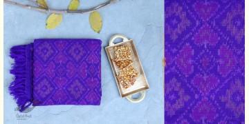 Vasant | वसंत ☘ Woolen Ikat Patola Shawl ~ R