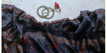 पार्वती ❋ Ajrakh Modal Silk Saree ❋ 13