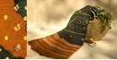 शाकरचित | Shakrachit ⚹ Handwoven Woolen Shawl { 11 }