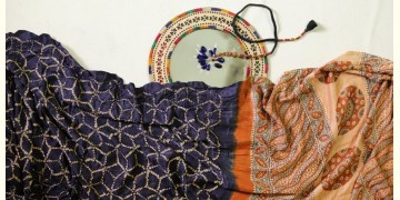 Charulata ★ Tie-Dye & Ajrakh ★ Gajji Silk Saree ★ 10