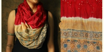 Flavors of fusion ★ Tabi Silk Ajrakh Bandhani Stole ~ 11