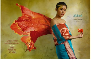 Ojovati ❢ Maheshwari ❢ Cotton Silk Saree with Zari Border