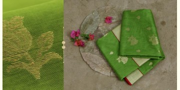 Satyabhama - Chanderi Saree ~ 9