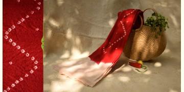 शाकरचित | Shakrachit ⚹ Handwoven Woolen Stole { 18 }