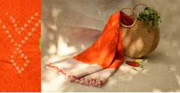 शाकरचित | Shakrachit ⚹ Handwoven Woolen Stole { 16 }