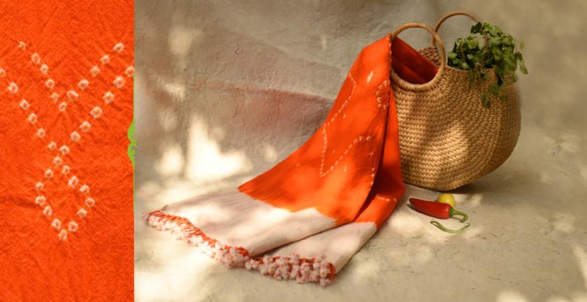 शाकरचित   Shakrachit ⚹ Handwoven Woolen Stole { 16 }