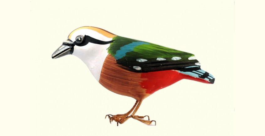 Some chirrups from wilderness ~ Indian Pitta