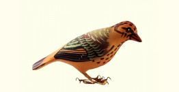 Some chirrups from wilderness ~ Tree pipit