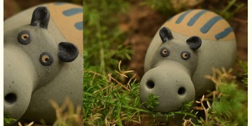 Gabbu ~ A Hippo