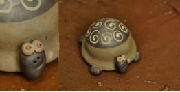 Lum Pum ~ A Tortoise