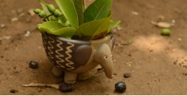 Lapoo - Elephant Planter