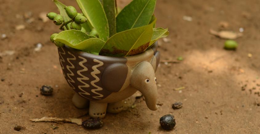 Lapoo - Elephant Planter