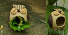 Owl Nest - Oooww