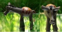 Bholu ~ A Donkey