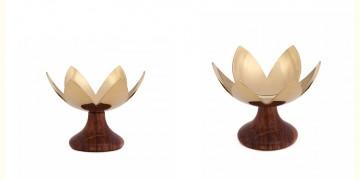 Lotus Blossoms ~ 3