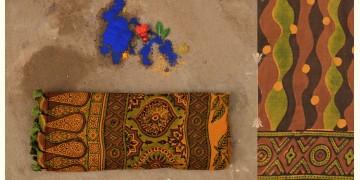 परवा ❋ Gajji Silk . Ajrakh Saree { n }