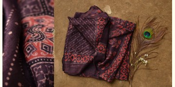 When Skies Bore Blossoms ❆ Gajji silk . Ajrakh dupatta ❆ 17