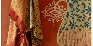 Handful of stars  ( Shibori ~ Ajrakh dupatta ) - {u}
