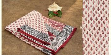 Aarvi ☘ Block Printed Cotton Saree ☘ 20