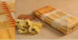 Kasavu Cotton Saree - 3