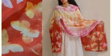 मलंग ☙ Chanderi Silk Clamp dyed Dupatta { तितली } ☙