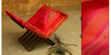 Colors of Devotion ~ Maheshwari Saree * 11