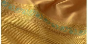 Madhubala ✽ Banarasi Silk Saree ✽ 13